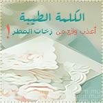 الصورة الرمزية الاء حسين