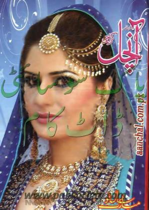 Aanchal digest january 2014 download pdf book